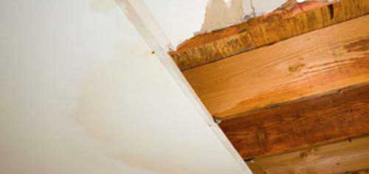 Lekkage door wand- en vloertegels - Loodgieter Den Haag